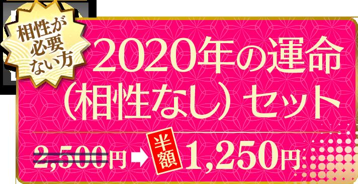 相性が必要ない方 2020年の運命(相性なし)セット(半額) 1,250円