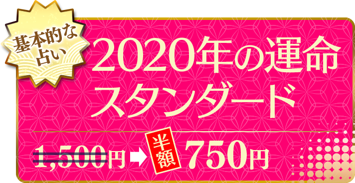 基本的な占い 2020年の運命スタンダード(半額) 750円