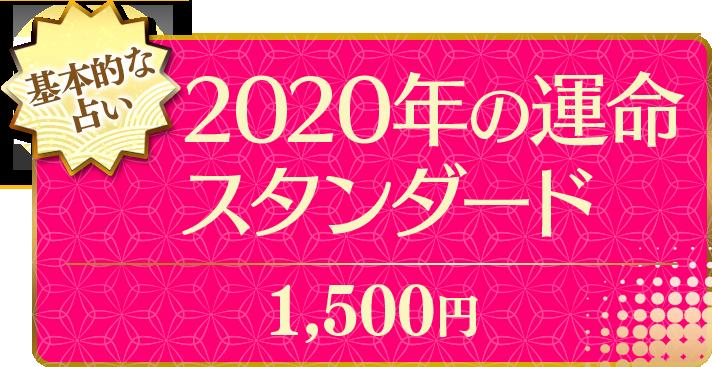 基本的な占い 2020年の運命スタンダード 1,500円